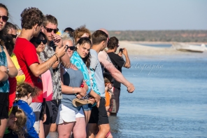 The crowds gather to watch the local dolphins come to shore at Monkey Mia, Shark Bay - Western Australia