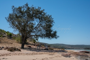 Our picnic spot on the Murchison River, Kalbarri, Western Australia