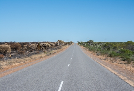 A road of two halves - perhaps the road acted as a fire break - Kalbarri National Park