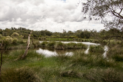 Canning River Regional Park