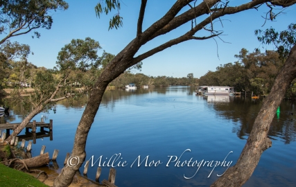 Finished off the sanctuary tour with lunch at a lovely spot on the Murray River.