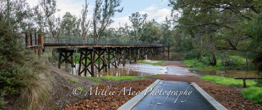 The Old Railway Bridge - Nannup